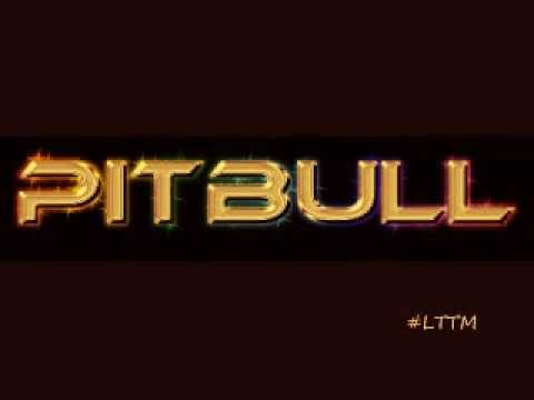 Pitbull- Back in Time [Audio]