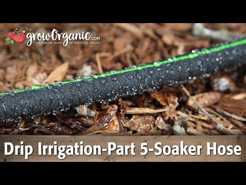 drip-irrigation-part-5-using-soaker-hose-in-the-garden