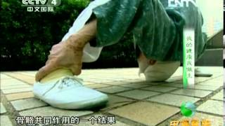 《中华医药》 20130227 我的健康我做主 腰添健 検索動画 16