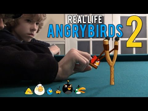 Real Life Angry Birds 2