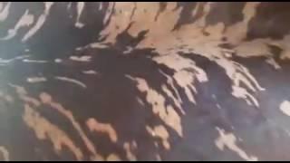 agustin carabajal YouTube Videos