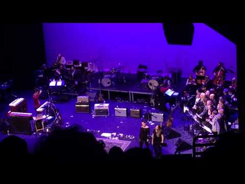 WILD HONEY ORCHESTRA cover The Beatles