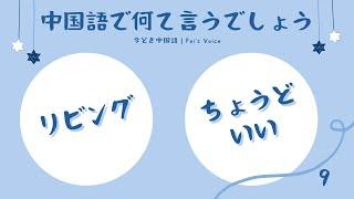 Day9 中国語ナレーターと音読・リスニング練習 1回目→単語→原文→2回目 フェイ先生の声日記 今どき中国語