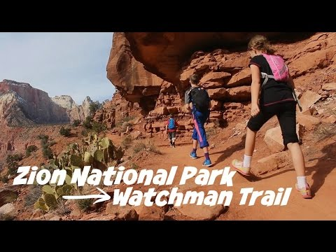 Hiking Watchman Trail | Zion National Park | Travel Diary