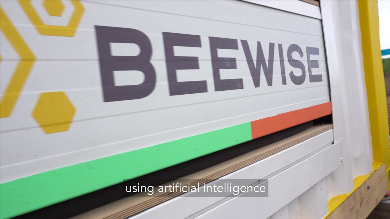 Beewise - what we're all about