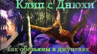 Клип с днюхи ____Как обезьяны в джунглях.Ютуб