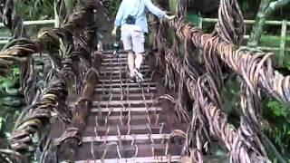 奥祖谷二重かずら橋 女橋