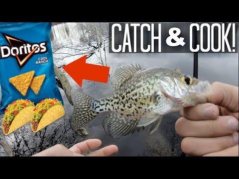CATCH AND COOK! Doritos Fish Tacos!! (Bank Fishing)