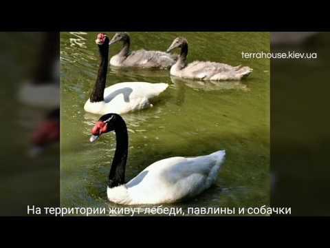 Аренда конференц-залов. Конференц-центры в Украине