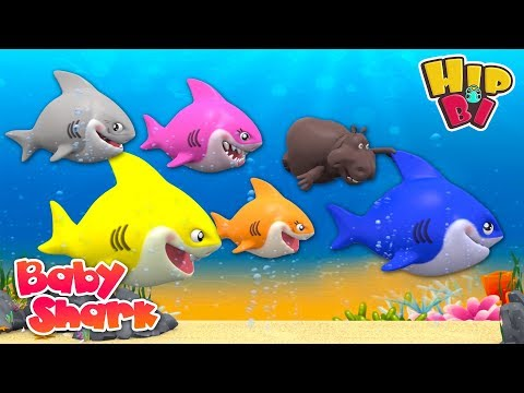 Funny Hippo Swim with Ba Shark Nursery Rhymes Songs for Kids  Hip Bi
