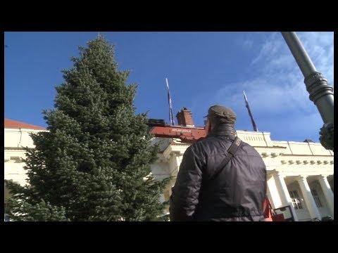 Größter Tannenbaum.Schwerins Größter Tannenbaum 2018 Schweriner Weihnachtsmarkt