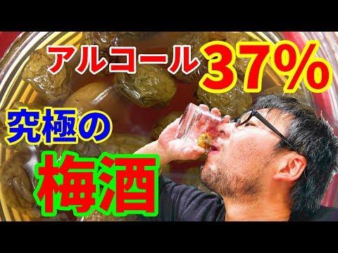 熟成期間半年!!アルコール度数37%の手造り梅酒を飲んでみた!!