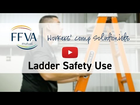 FFVA Mutual Ladder Use