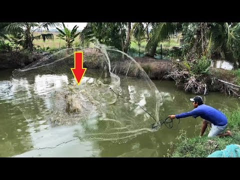 Cast Net Fishing Incredibly MONSTER Piranha Fish