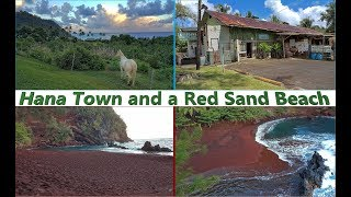 Maui, part 5:  In Hana Town and a Red Sand Beach