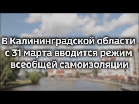 В Калининградской области с 31 марта вводится режим всеобщей самоизоляции