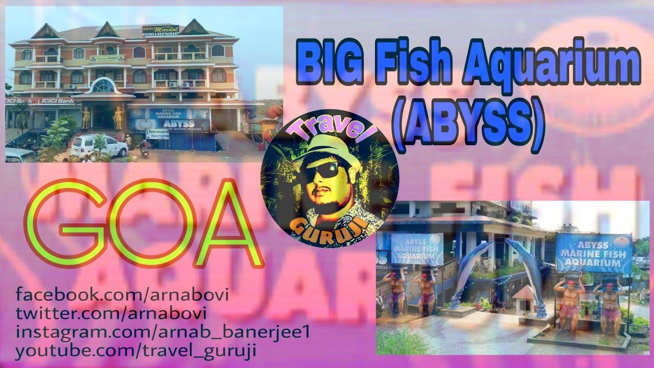 21 Explore Goa 001 Goa Big Fish Aquarium Full Video Abyss