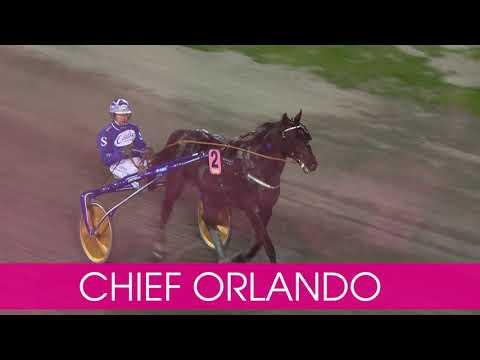 Välkommen till Elitloppet 2020 Chief Orlando!
