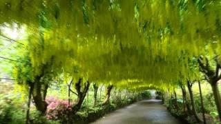 great british garden revival bodnant gardens