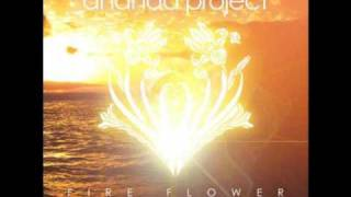 Ananda Project - Fireworks