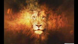 Lion on Fire Effect Live wallpaper - Animated background wallpapers loops videos screenshot 2
