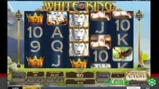 White King. Казино 21 nova(Проба слота White King. Крупный выигрыш! Изучите топ казино: http://bjmp.ru/track/casinoplayer/ Слот реально порадовал! Если..., 2016-09-09T08:08:14.000Z)