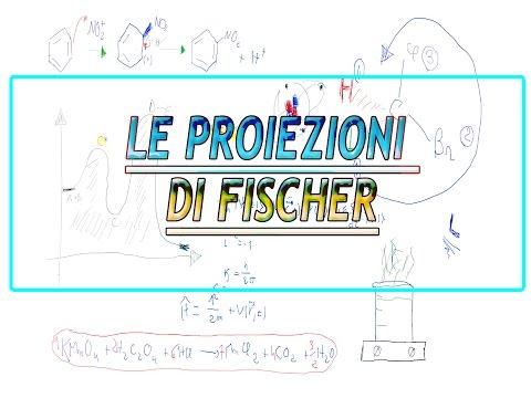 Le Proiezioni Di Fischer