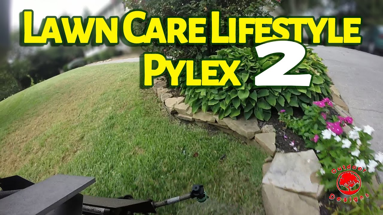 Part 2 How To Kill Bermudagrass Dallisgrass In Fescue With Pylex