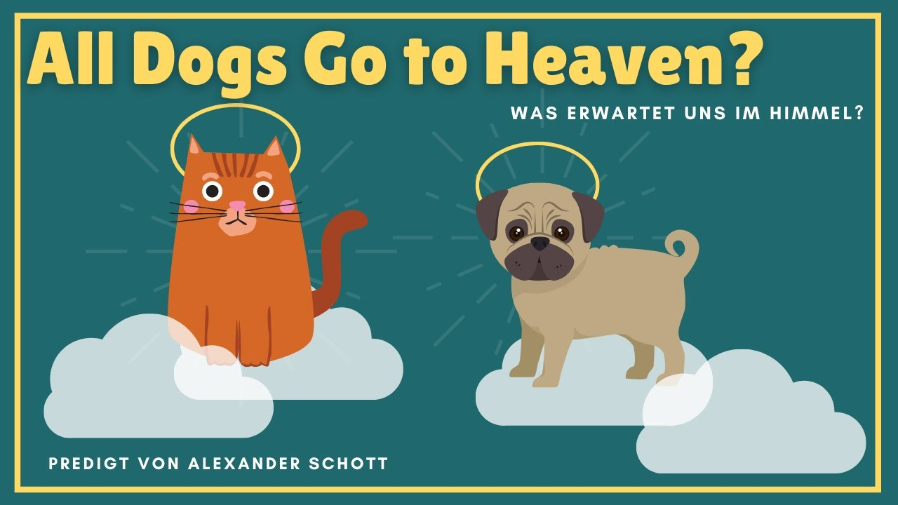 All Dogs Go to Heaven ?!