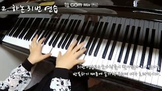 행복한 예술가의 피아노 치기 전 5분 손푸는 방법!! /손풀기 피아노 / 하논 연습 방법