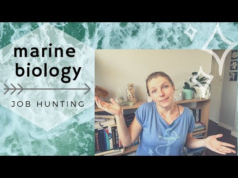 How To Find A Job As A Marine Biologist