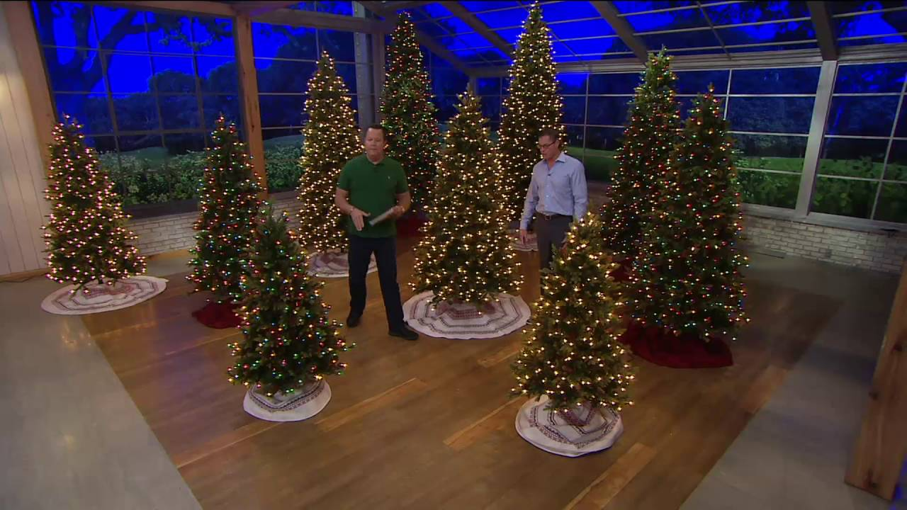 bethlehem lights heritage spruce christmas tree winstant power on qvc