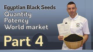 Egyptian Black Seeds: Quantity, Potency, World Market
