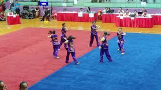 20180406 WuShu A Girls Group QuanShu 9073 RIVER VALLEY HIGH SCHOOL