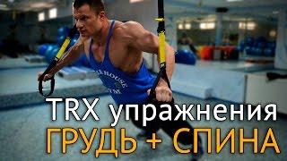 TRX упражнения на грудь и спину дома и на природе(В этом видео приводятся упражнения с петлями #TRX на грудь и спину, которые можно выполнять как в зале, так..., 2016-06-30T06:48:21.000Z)