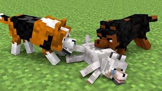 Monster School : Season 10 All Episode - Minecraft Animation