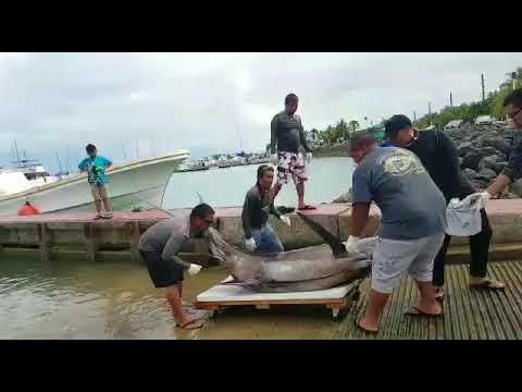 2017 Guam International Fishing Derby