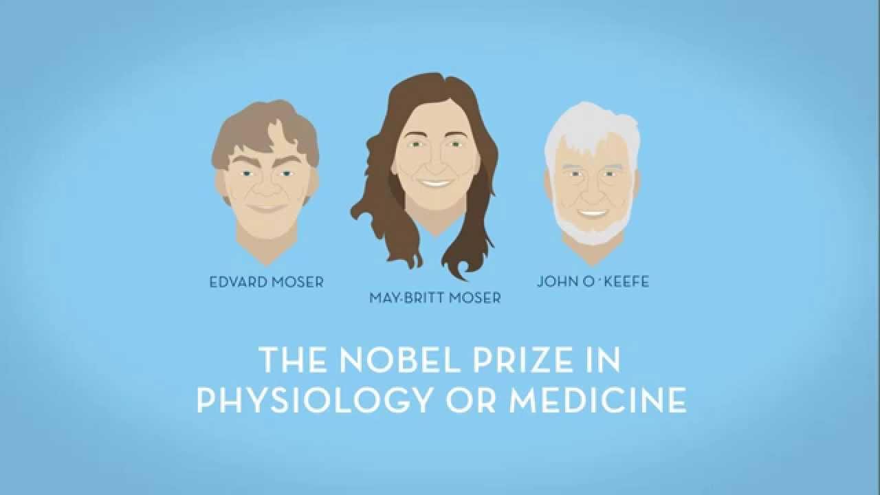 Nobel Prize in Medicine 2014 - Animated infographic - YouTube