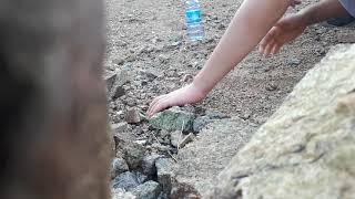 (ابن الوز عوام) جنني كل يوم يبغى يطلع ينقب معي عن الاحجار الكريمة