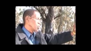 Udlala Ngami - David Masondo