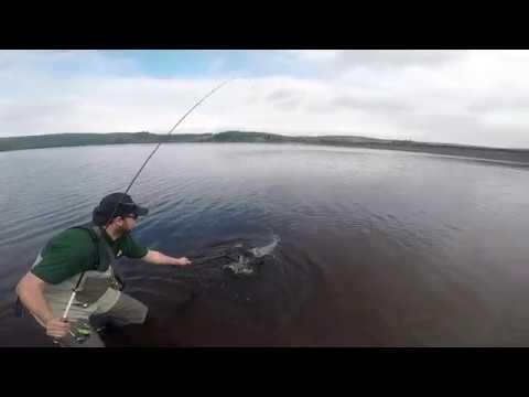 Ultra Light Rainbow Trout Fishing, Usk Reservoir . Wales