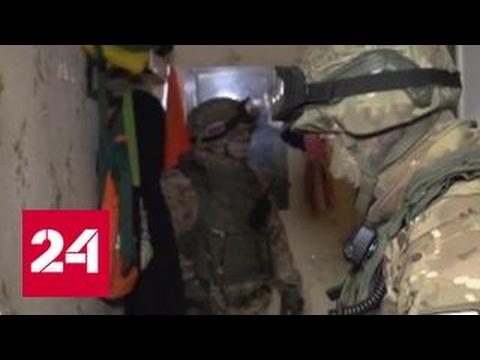 Спецоперация ФСБ и МВД в Калининграде: обезврежена банда исламистов