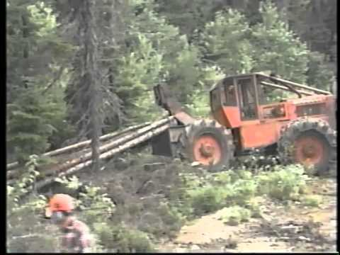 Christmas Mountain Blowdown