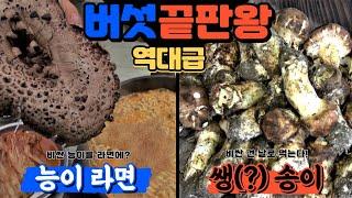 [역대급 버섯 끝판왕]자연산 능이버섯 라면ㅣ자연산 송이…