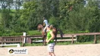 Part 1/2 Diana Burnett - Jumping - Canadian Eventing Team Training Camp