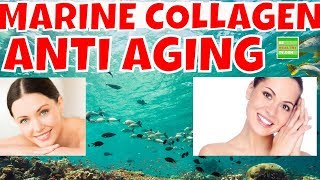 Marine Collagen The Best Inexpensive Anti-Aging Protein Every Lady Should Use.