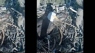 Big Bear Eagles - Quality time with Dad - 02-20-18