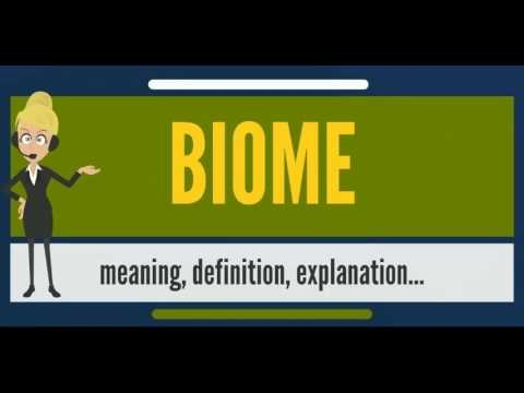What is BIOME? What does BIOME mean? BIOME meaning, definition, explanation & pronunciation