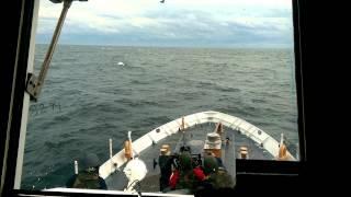 United States Coast Guard 25mm Gun Shoot