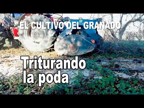 El cultivo del granado - Triturando los restos de poda